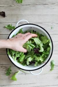 Florette Salat - Vielfalt Genuss