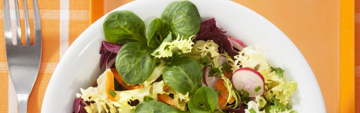 Salat mit Radieschen, Möhren und Schnittlauch